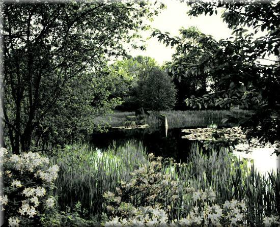 Ogrod Botaniczny w Lodzi : Ogród Botaniczny