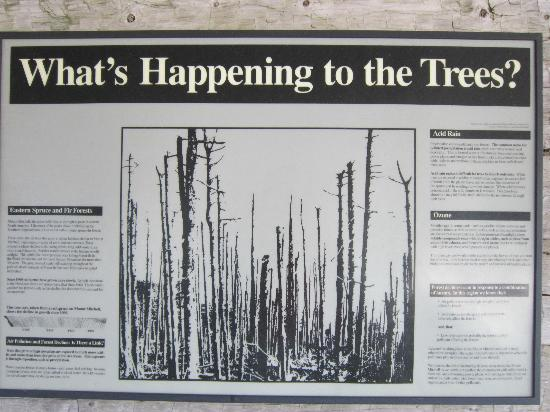 Mount Mitchell State Park: helpful information provided about habitat