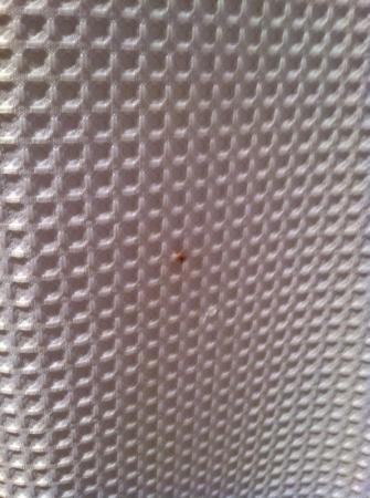 Azul Inn West Los Angeles: blood stain on outside of shower curtain