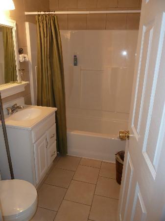 Under The Eaves: Bathroom hikers room