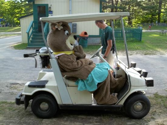 Yogi Bear's Jellystone Park Camp Resort : cindy bear came to our camp site
