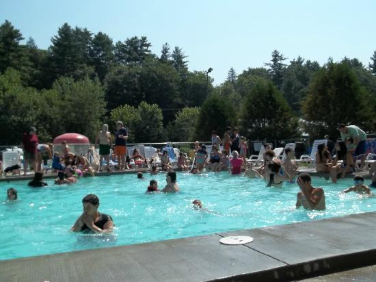Yogi Bear's Jellystone Park Camp Resort : swimming at the pool