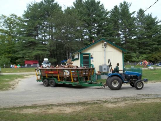 Yogi Bear's Jellystone Park Camp Resort: hayride