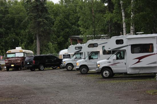 Talkeetna Camper Park : View of sites