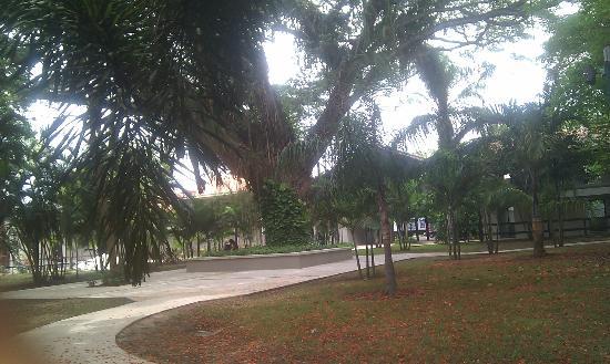 Hotel Banos de Coamo: The middle of the courtyard