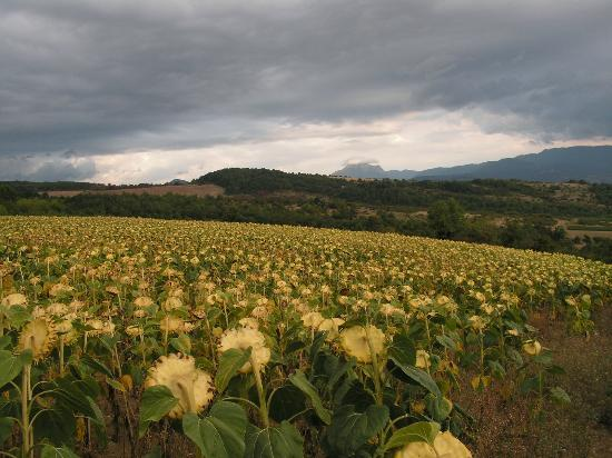 La Maison de Leoncie: Une vue près de Roquetaillade