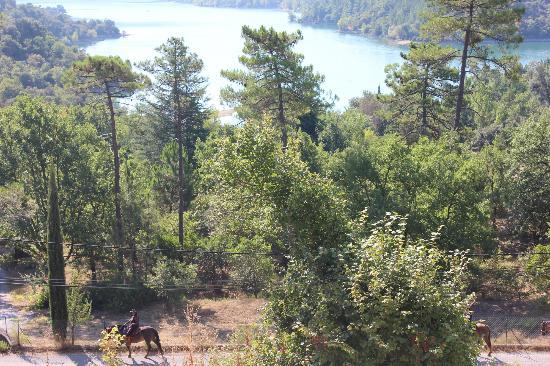 Les Gites du Lac : Вид из номера!