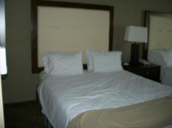 Holiday Inn Express Hotel & Suites Logan: Queen-sized bed
