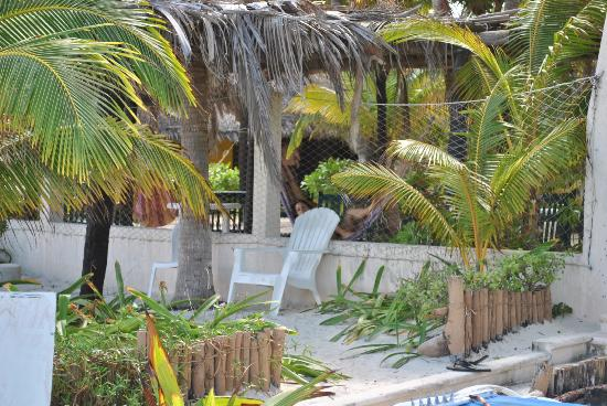 Hotel Villa Kiin: the garden