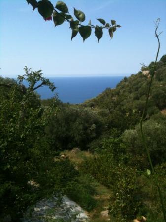 'A Machina - La Locanda del Fiume : The Beautiful view