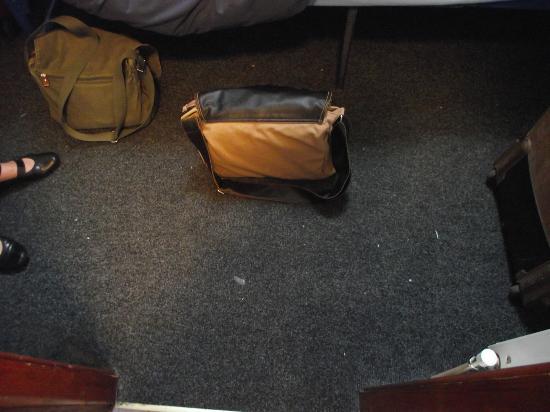 Sheilas: moquette/carpet