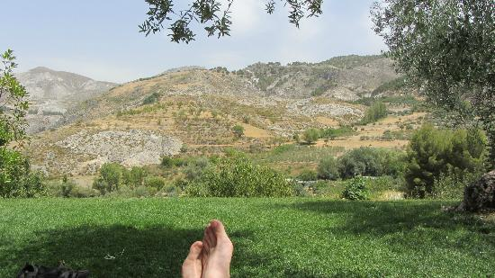 La Almunia del Valle: View from the pool.