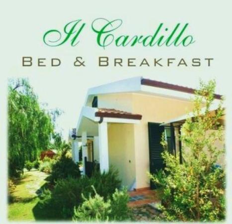 Villa Il Cardillo