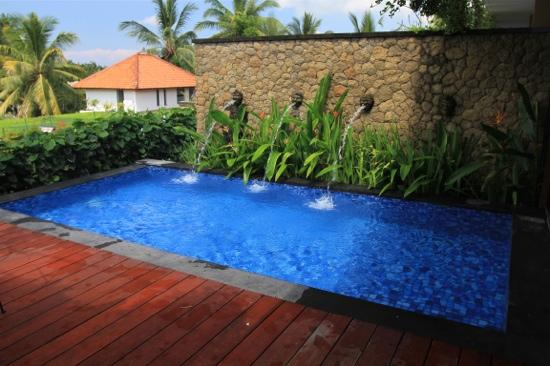 Ubud Green: our own private pool