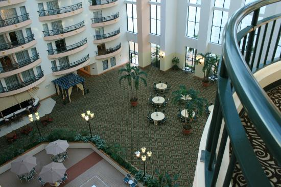 Savannah Marriott Riverfront: View from room