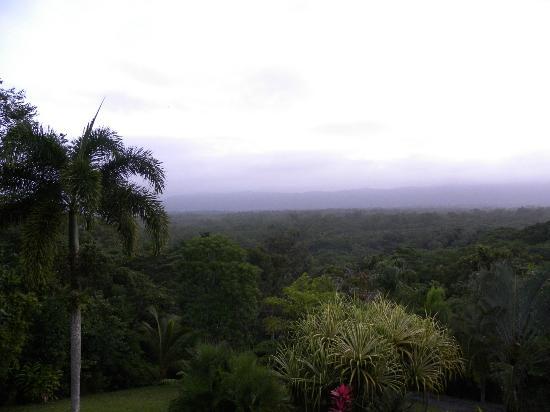 Daintree Manor B&B: Vista desde el balcón
