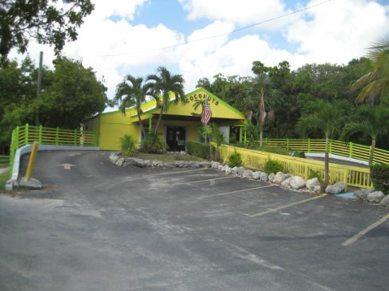 """Coconuts Bar & Liquor Store: Coconuts..The """"NUT"""" Pine Key at the only light !!"""