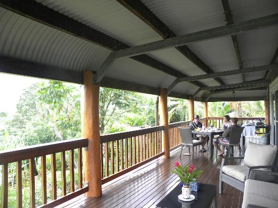 Daintree Manor B&B 사진