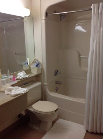 vue mini salle de bain photo de holiday inn toronto downtown centre toronto tripadvisor. Black Bedroom Furniture Sets. Home Design Ideas