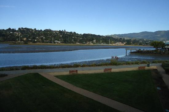 Acqua Hotel Mill Valley: View from balcony of room 206. Low Tide.