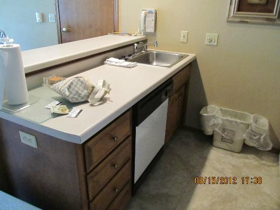 Bridgeport Resort: Kitchen sink area with dishwasher