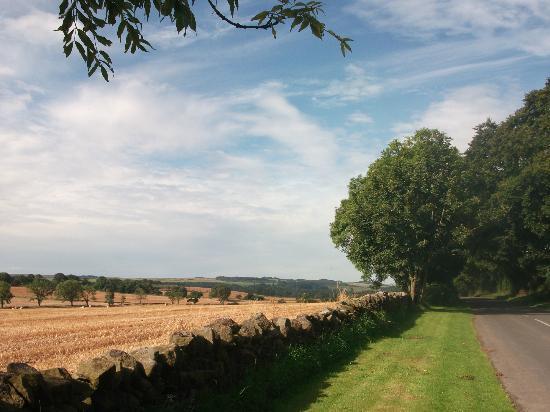 Fairshaw Rigg: Amazing views