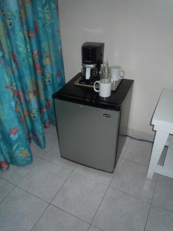 كلوب أمبيانس أول إنكلوسف (للكبار فقط): refrigerator (in room) 