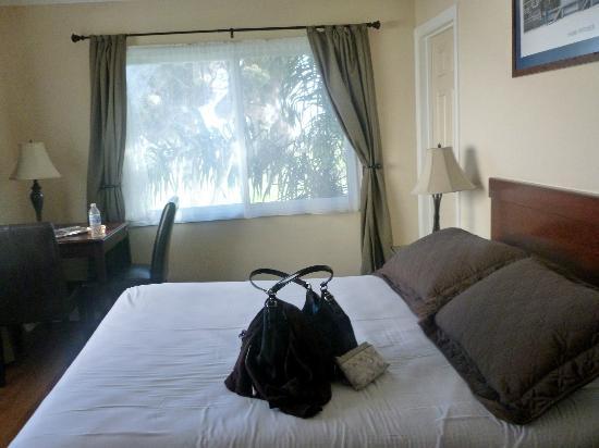 Blue Sands Motel : Bedroom #2
