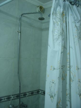 Union Hotel: shower
