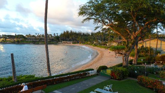 Napili Surf Beach Resort照片