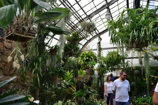 Lincoln Park Conservatory: .