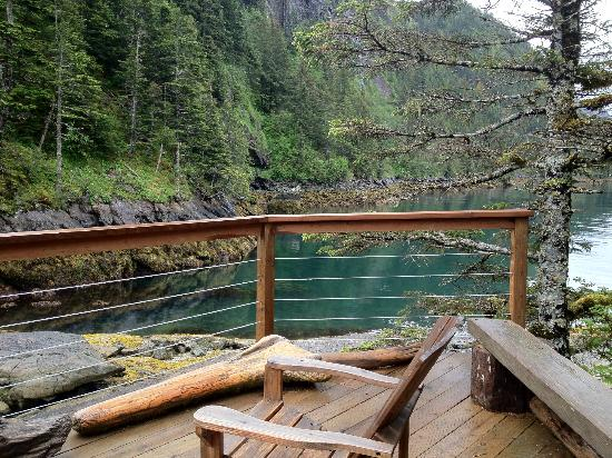 Orca Island Cabins: View from porch