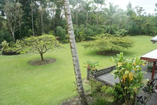 Hale Moana Bed & Breakfast: View from our balcony: the large green garden