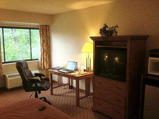 BEST WESTERN Airport Plaza Hotel: TV and Desk Area