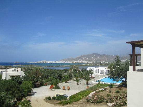 Kedros Villas: Myrtle Villa - View of Grounds & Naxos Town
