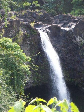 Polynesian Adventure Tours: Rainbow Falls
