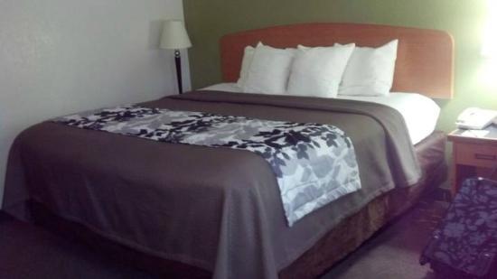 Sleep Inn & Suites: King Guest Room