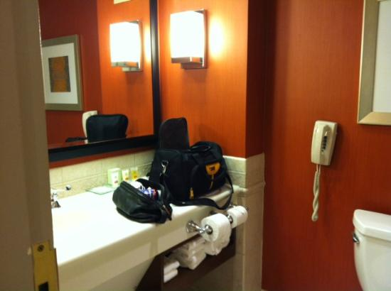 Great Cedar Hotel at Foxwoods: Sink