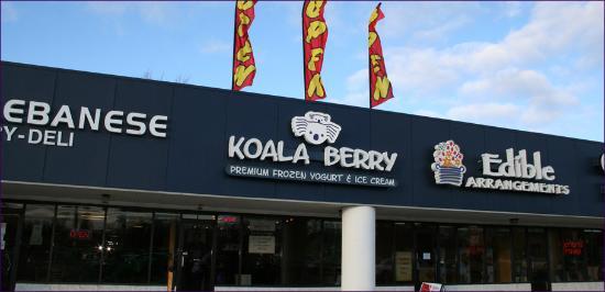 Koala berry toledo ohio coupon