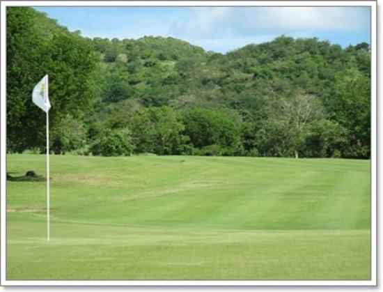 Carambola Golf Club Photo
