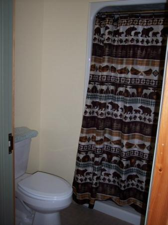 Highland Center Lodge at Crawford Notch : Shower curtain