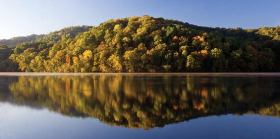 Radnor Lake State Park Nashville Tn Top Tips Before