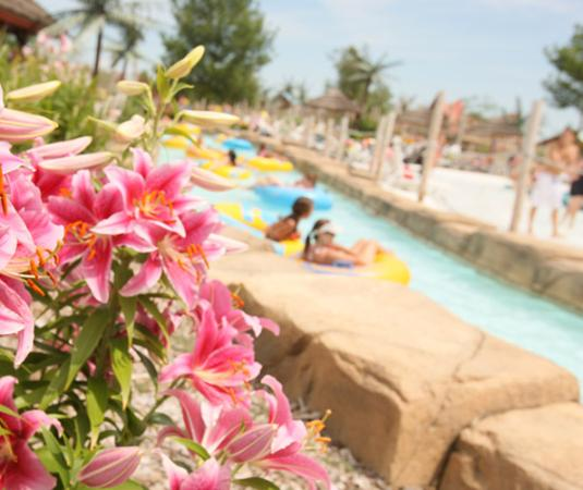 Lost Island Water Park: Lush flowers surround you