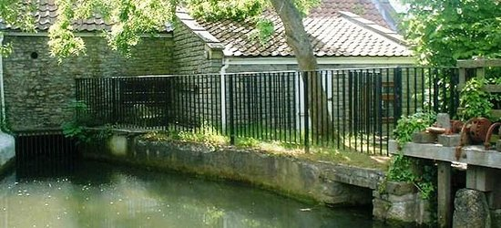 Burcott Mill: The 1000 year old Mill Leat