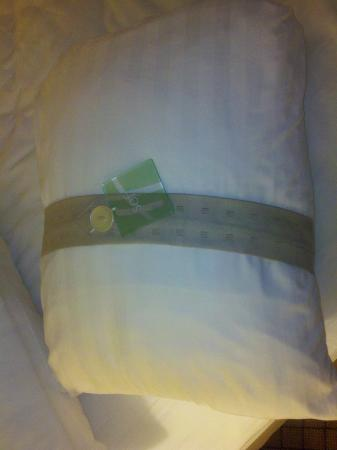 Holiday Inn Orangeburg - Rockland / Bergen: Lipstick on a pig... putting a band around your pillow does not a 1st class hotel make