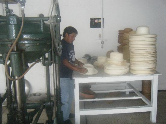 Homero Ortega: Final reshaping