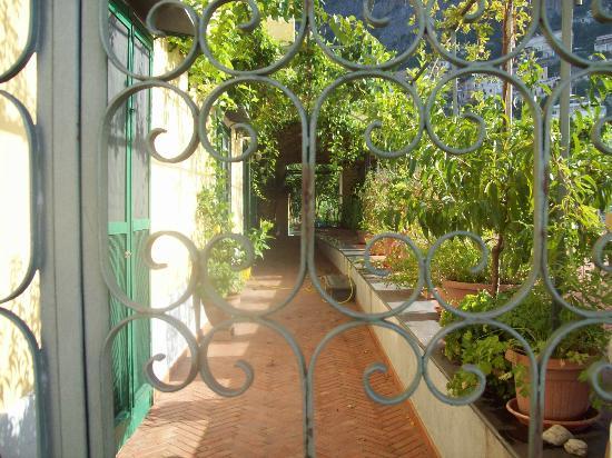 Casa Cosenza: Hotel grounds