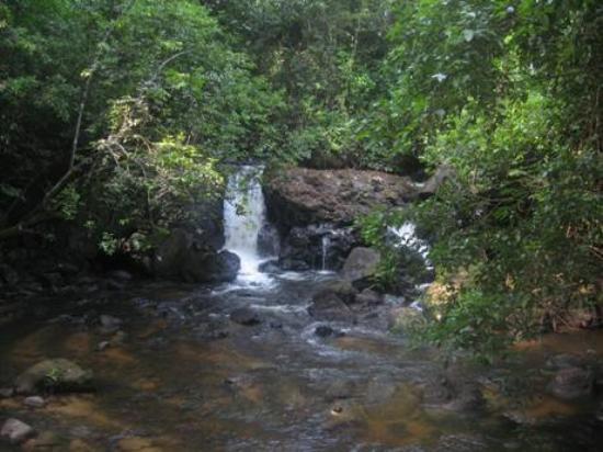 Foto de Foundation for Nature Preservation (Stinasu)