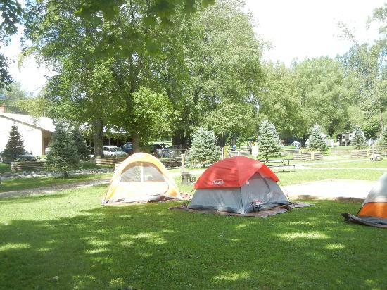 Herkimer KOA Campground : campsite