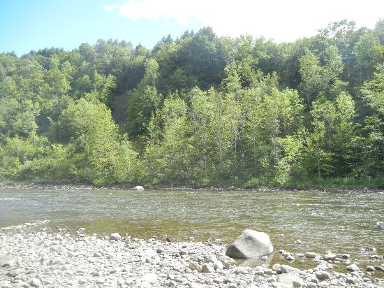 Herkimer KOA Campground: river